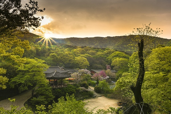 Южная Корея 1