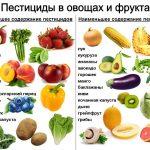Фото - Клубника оказалась лидером по количеству опасных пестицидов